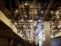 SilverStar-USA-Ceiling-Tiles-1
