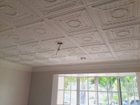 SilverStar-USA-Ceiling-Tiles-18