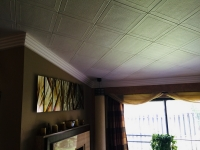 SilverStar-USA-Ceiling-Tiles-29