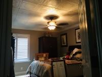 SilverStar-USA-Ceiling-Tiles-35