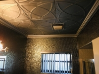 SilverStar-USA-Ceiling-Tiles-46