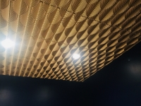 SilverStar-USA-Ceiling-Tiles-49