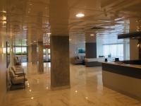 SilverStar-USA-Ceiling-Tiles-60